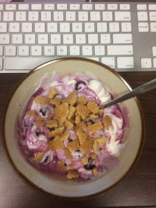 Bowl of yogurt, blueberries, and cookies